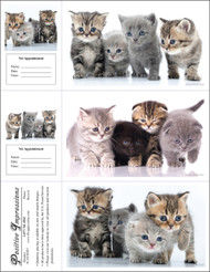 3CATMIX7 - 3 Up Reminder Cards