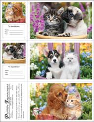 3DCMIX34 - 3 Up Reminder Cards