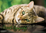 SYMCAT10 - Sympathy Card