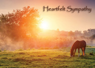 SYMEQ7 - Sympathy Card