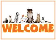 WELCOMEMIX2 - Welcome Card