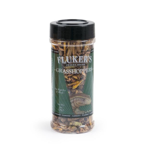 Freeze Dried Grasshoppers