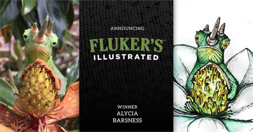 Fluker's Illustrated Calendar - 2017