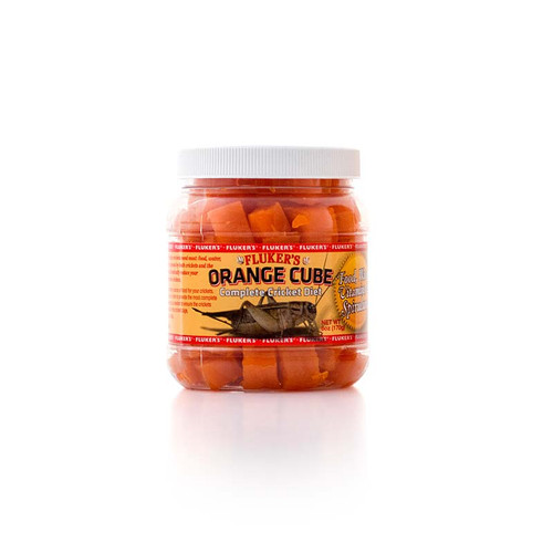 Orange Cube Cricket Diet