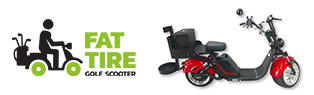 5% Off Fat Tire Cruiser 3.0 Scooter!
