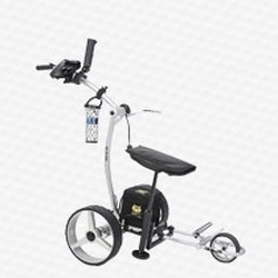 Electric Carts