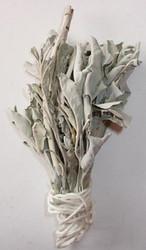 White Sage Dry Herb
