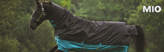 Horse wearing Mio turnout blanket