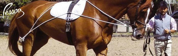 Pessoa equestrian