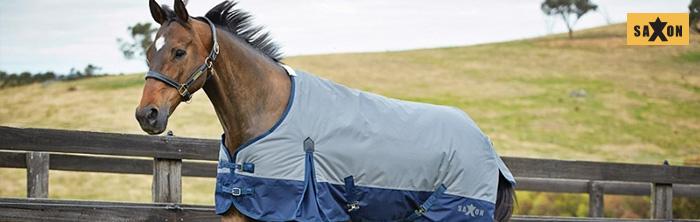 horse wearing Saxon turnout blanket