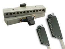 ShoreTel 12 Port Harmonica Adapter with Amphenol Cable