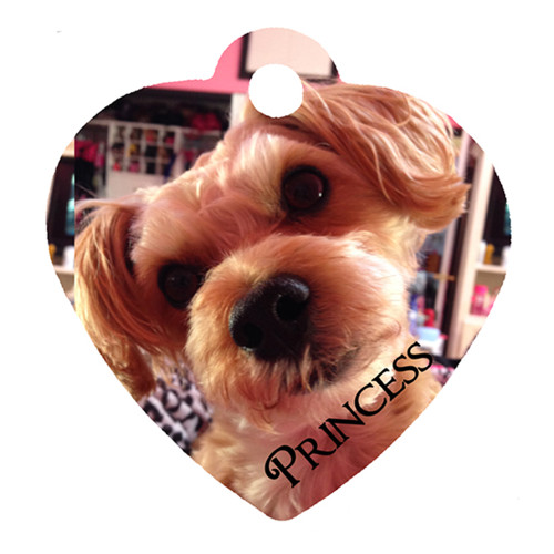 Custom Personalized Pet Charms / Pet Tags - Add Photo, Name, Number - 2 Printable Sides