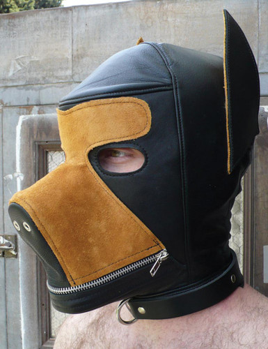 Two Toned Puppy Hood