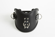 Lockable Posture Collar with 3 D rings