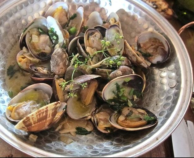 clams-vino-verde.jpg