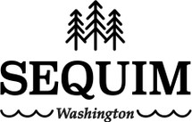 Custom listing - Seqium logo on 24 mason drinking jars SHIP 3/1