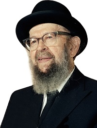 Rabbi Miller Picture