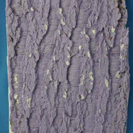 "Tree Bark Texture Mat--Silicone-- 6 1/4"" x 5""--Used In Craftsy Class"