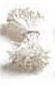 Stamen--White