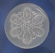 Clear Brooch Mold #41--Clear Silicone
