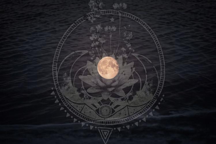 Witches' Qi Elixir: Eleven Cauldron Flavors