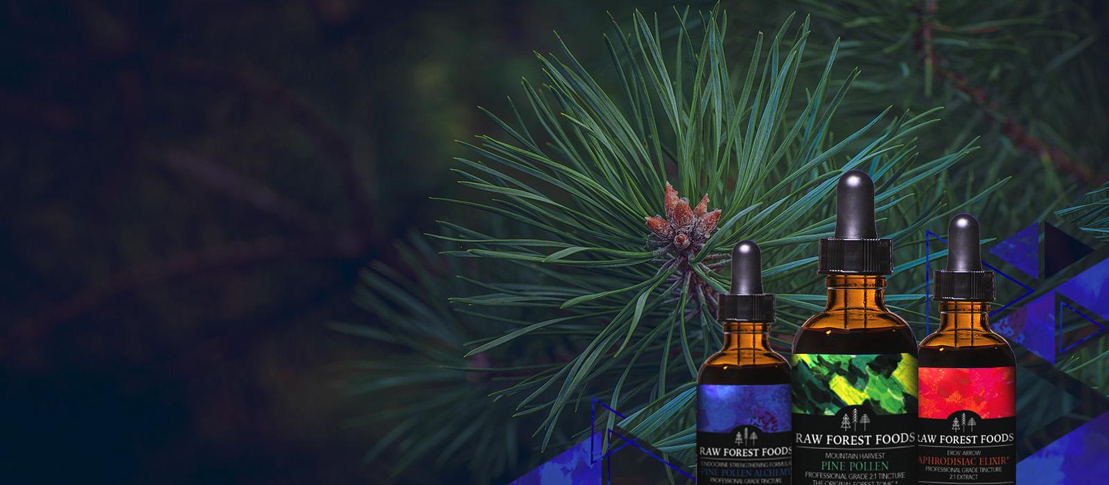 Pine Pollen Tinctures and Formulas