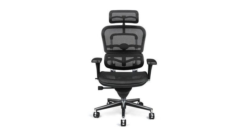 Affordably priced and attractive to boot, the Raynor Ergohuman looks great in the home or in the office