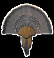 HS Turkey Tail & Beard Mounting Kit