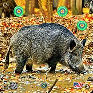 Arrowmat Hog Target 17x17 - 3 Pack Paper Targets