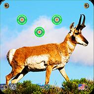 Arrowmat Antelope Target 17x17 - 3 Pack Paper Targets