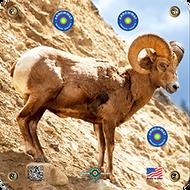 Arrowmat Big Horn Sheep Target 17x17 - 3 Pack Paper Targets