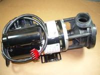 Leisure Bay Spas Pump, 3HP 1 SP AUQ 240V C-Series, 303774