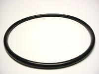 PUM22500060 Cal Spas Pump Basket Lid O-Ring 2.6HP