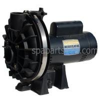 6500-192 Sundance® Spas Sta-Rite Pump 120 Volt, 2 Speed Pump Complete 1984-1989