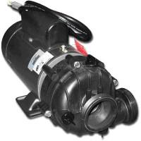 01562-21 Dimension Ones Spas Pump, 1.5hp, Two Speed, 110V, Sta-Rite DJAYEA-9113