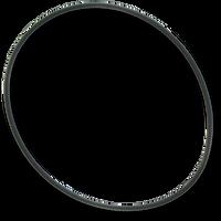 01510-329, D1 Spas Light Body O-Ring, (2Pkg.)
