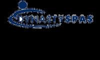 10093 Dynasty Spas Topside Overlay, 2000 Pack, W Air, Trevi Logo