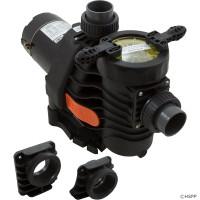 "Pump, Spck EsyFit,DynaPro/Glas,1.5hp,115v/230v,1Spd,1.5"",Kit (1)"