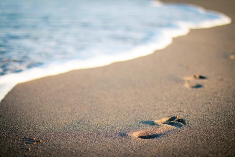beach, sunlight- Cocoweb