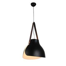 "15"" Enna LED Pendant Light in Black"