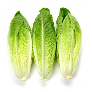 Lettuce Romaine Heart 3PK