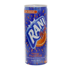 Orange Juice Float 240ml - Rani