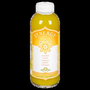 Synergy Mystic Mango Kombucha (480 mL)