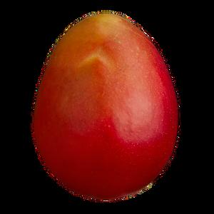 Mango (1 ea)