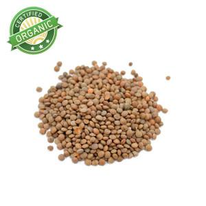 Organic Brown Lentils 1lb