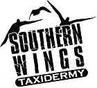 Southern Wings Taxidermy