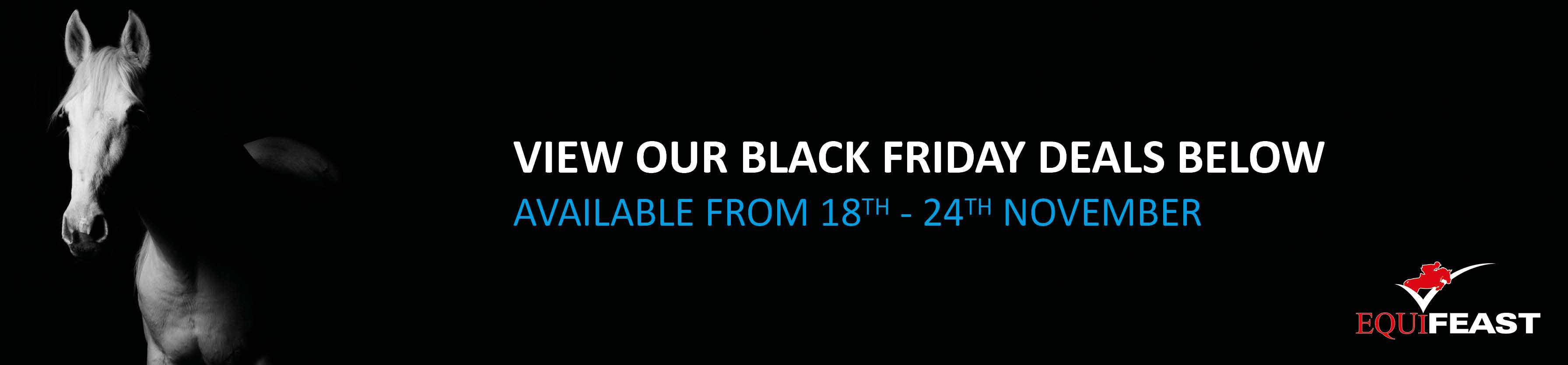 black-friday-website-banner-v2.jpg