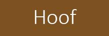 hoof-2.jpg