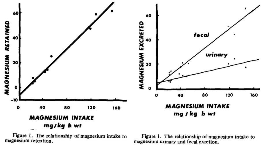magnesium-intake-graph.jpg