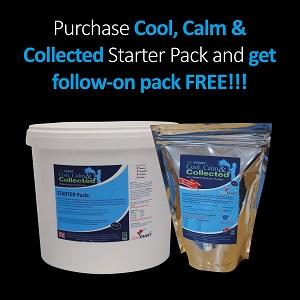 starter-pack-offer-v2-300.jpg